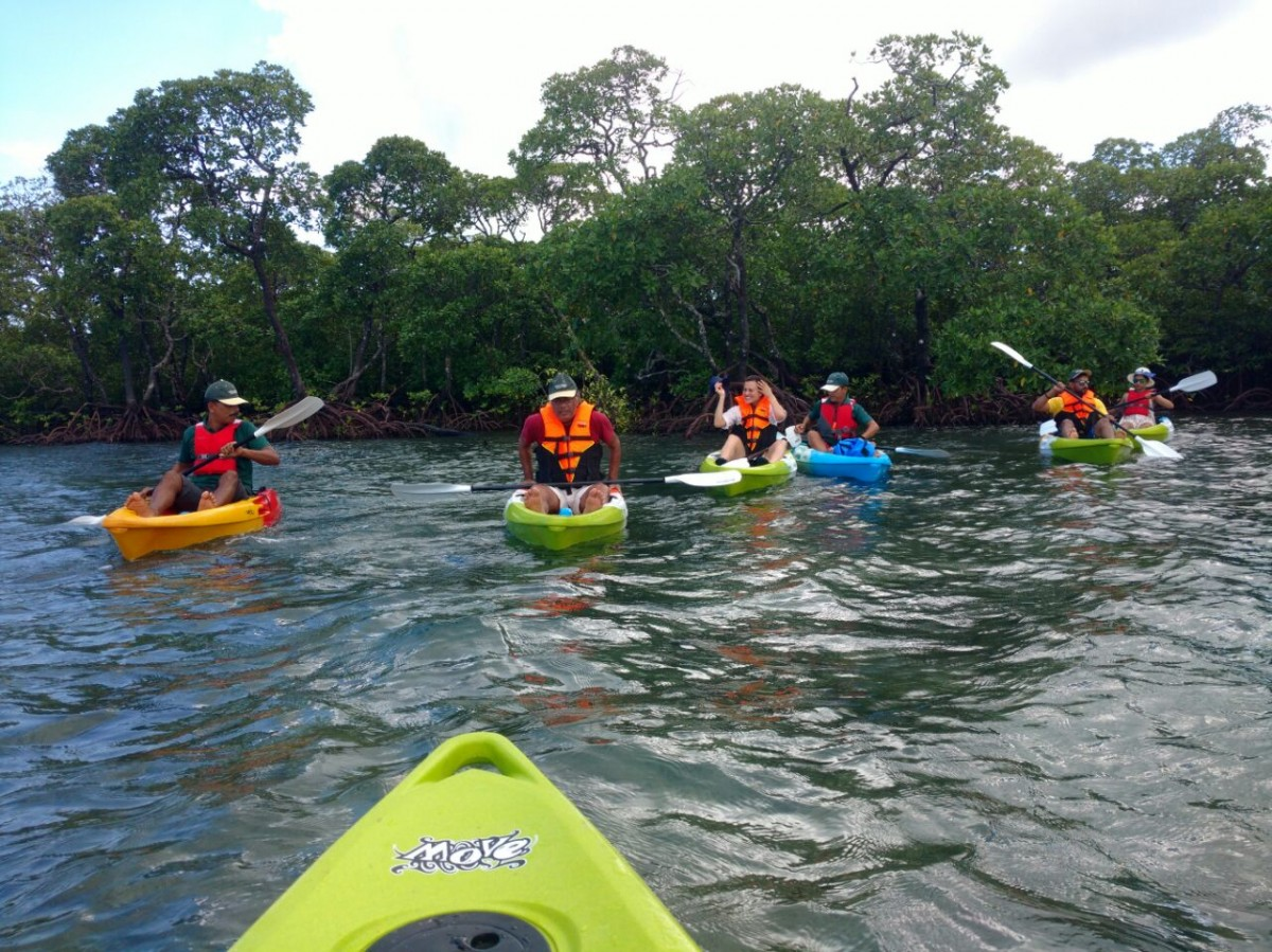 http://www.thegreatnext.com/Kayaking Havelock Day Andaman Adventure Travel The Great Next