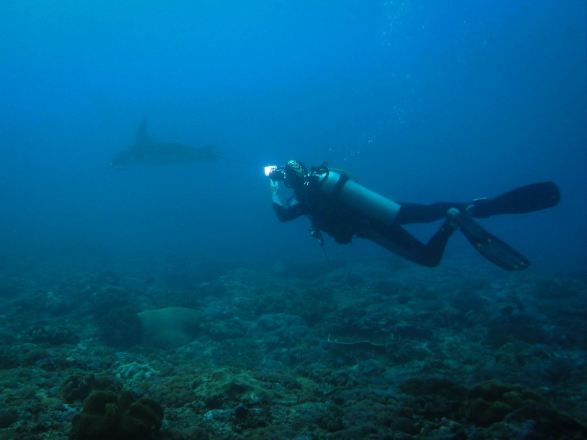 http://www.thegreatnext.com/Scuba Diving PADI Advanced Open Water Indonesia Bali Padang Bai Adventure Travel The Great Next