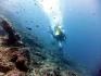 http://m.thegreatnext.com/Scuba Diving Bali Indonesia Nusa Penida Adventure Travel The Great Next