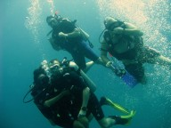 http://www.thegreatnext.com/Scuba Diving Discover Scuba Dive Pattaya Thailand Adventure The Great Next
