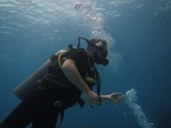 http://www.thegreatnext.com/Scuba Diving PADI Koh Samui Thailand Adventure Travel The Great Next