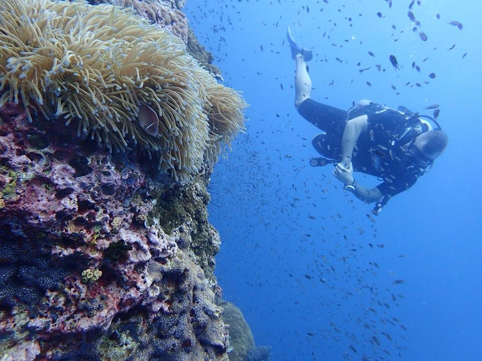 http://www.thegreatnext.com/Scuba Diving PADI Open Water Koh Samui Thailand Adventure Travel The Great Next