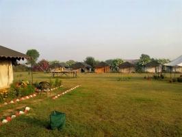 New Year camping in Damdama