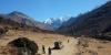 http://www.thegreatnext.com/Trekking Langtang Nepal Adventure Travel The Great Next