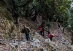 http://www.thegreatnext.com/Trekking Himachal Pradesh Prashar Lake Adventure Travel The Great Next