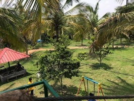 Sakleshpur camping with treehouse stay