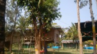 http://www.thegreatnext.com/Camping Sakleshpur Karnataka Adventure Travel The Great Next