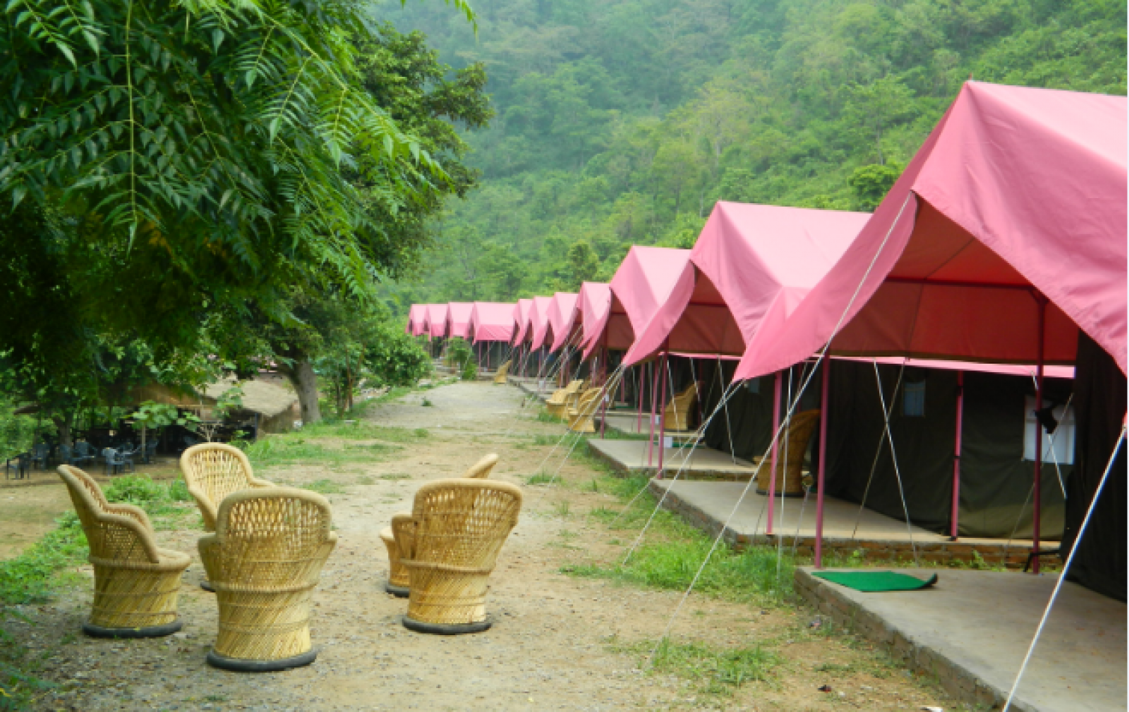 http://m.thegreatnext.com/Camping Dhanaulti Uttarakhand Adventure Travel The Great Next