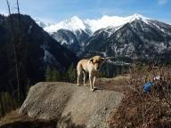 http://www.thegreatnext.com/Trekking Har Ki Dun Uttarakhand Adventure Travel The Great Next