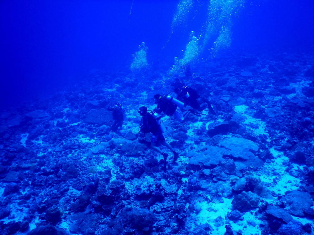 http://www.thegreatnext.com/Scuba Diving Open Water PADI Andaman Neil The Great Next Adventure Travel