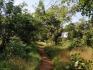 http://www.thegreatnext.com/Camping Sinhagad Fort Maharashtra Adventure Travel The Great Next