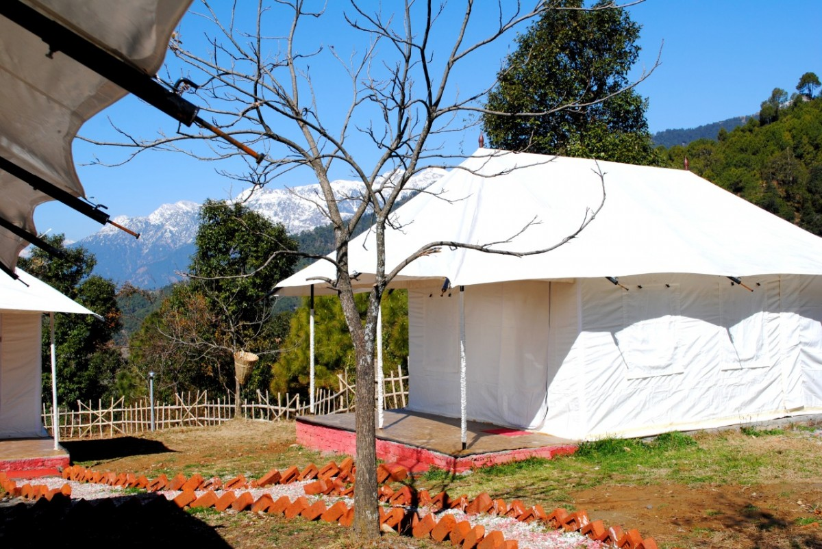 http://m.thegreatnext.com/Camping Himachal Pradesh Bir Biling Adventure Travel The Great Next
