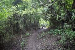 http://m.thegreatnext.com/Camping Maharashtra Pune Adventure Travel The Great Next