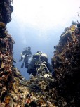 http://www.thegreatnext.com/Scuba Diving Bali Gili Trawangan Indonesia Adventure Travel The Great Next