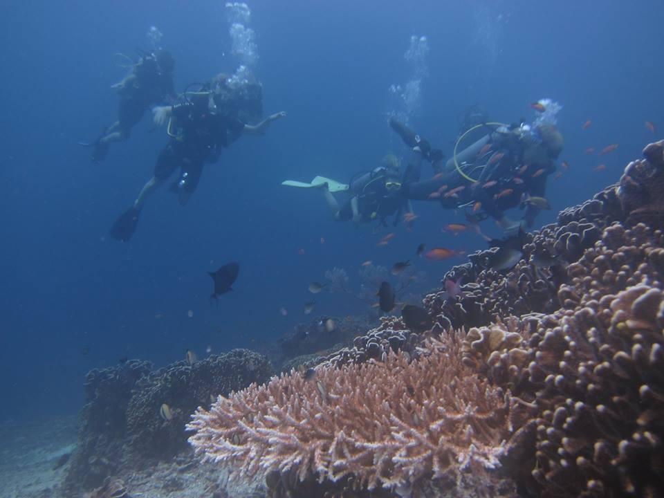 http://www.thegreatnext.com/Scuba Diving Bali Gili Trawangan Indonesia Adventure Travel The Great Next