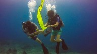 http://m.thegreatnext.com/Scuba Diving Bali Gili Trawangan Indonesia Course PADI Advanced Open Water Diver Adventure Travel The Great Next