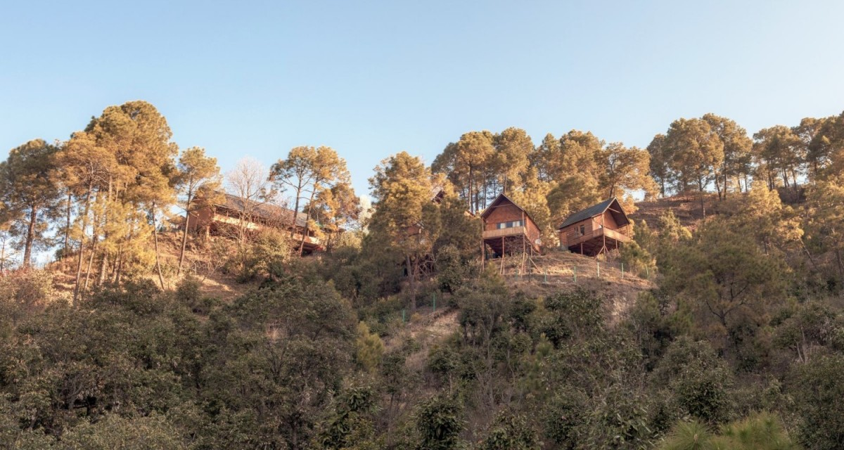 http://m.thegreatnext.com/Camping Shimla Treehouse Himachal Pradesh Adventure Travel The Great Next