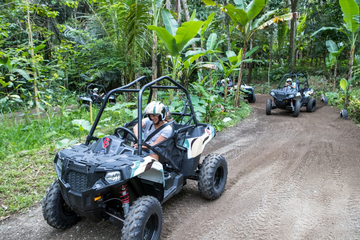 http://m.thegreatnext.com/Bali ATV Jungle Buggy Indonesia Adventure Travel The Great Next
