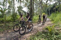 http://www.thegreatnext.com/Bali Mountain Cycling Ubud Indonesia Adventure Travel The Great Next