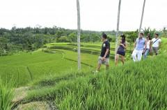 http://www.thegreatnext.com/Bali Trekking Ubud Indonesia Adventure Travel The Great Next