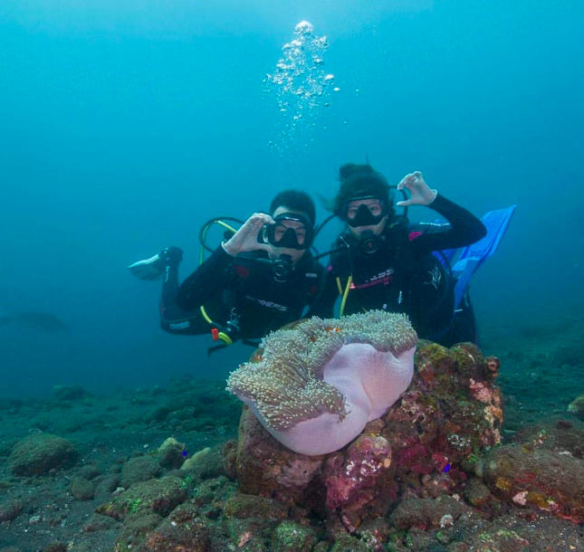 http://m.thegreatnext.com/Scuba Diving PADI Course Open Water Diver Bali Amed Indonesia Adventure Travel The Great Next