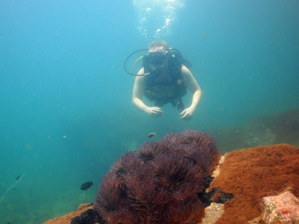 http://m.thegreatnext.com/Scuba Diving PADI Advanced Open Water Diver Pattaya Thailand Adventure The Great Next