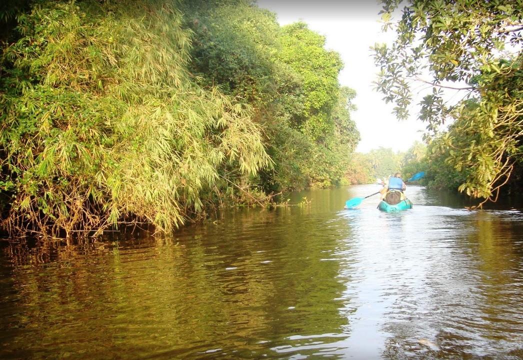 http://m.thegreatnext.com/Sal Backwaters Kayaking Margao Goa Adventure Travel The Great Next