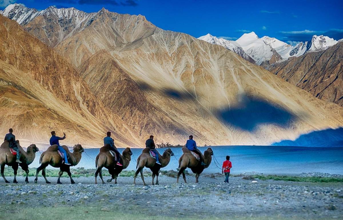 http://m.thegreatnext.com/Trekking Rafting Road Trip Ladakh Adventure Travel The Great Next