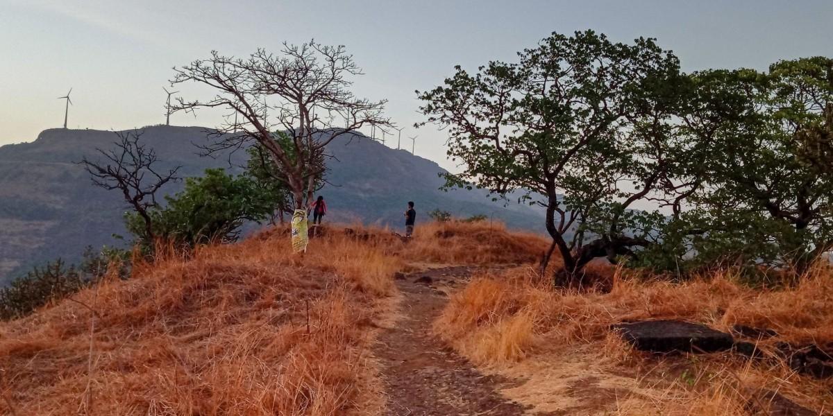 http://m.thegreatnext.com/Trekking Kothaligad Maharashtra Adventure Travel The Great Next
