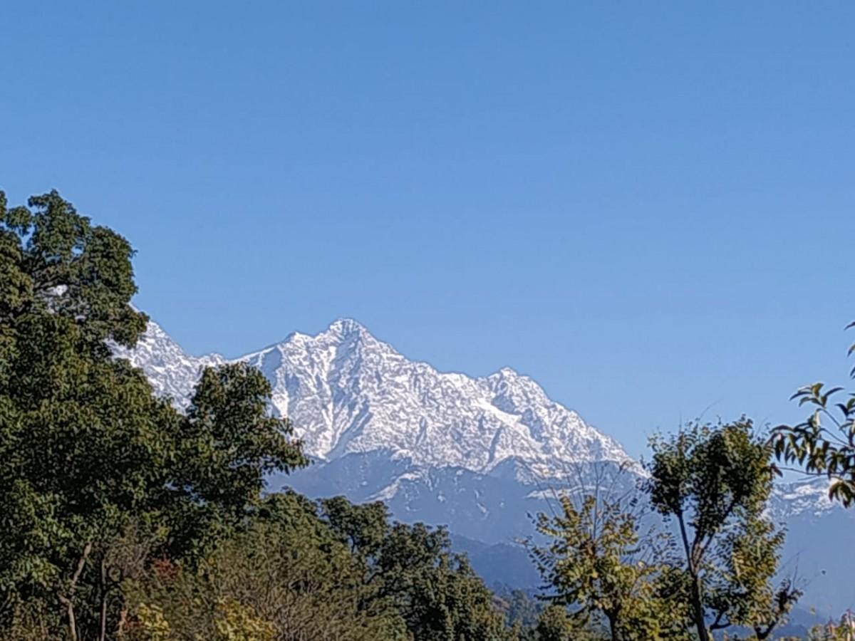 http://www.thegreatnext.com/Trekking Camping McLeod Ganj Himachal Pradesh Adventure Travel The Great Next