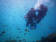 http://m.thegreatnext.com/Scuba Diving Havelock India Try Dive SSI Adventure Travel The Great Next