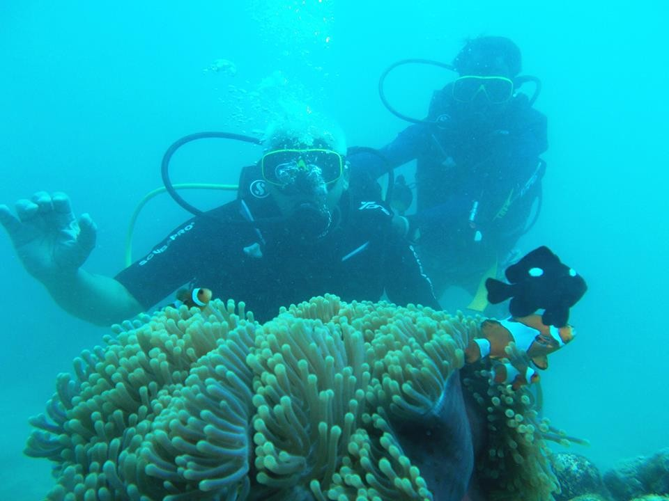 http://www.thegreatnext.com/Scuba Diving Havelock India Open Water Diver SSI Adventure Travel The Great Next