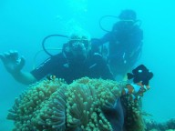 http://m.thegreatnext.com/Scuba Diving Havelock India Open Water Diver SSI Adventure Travel The Great Next