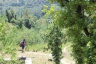http://m.thegreatnext.com/Camping Uttarakhand Mukteshwar Adventure Travel The Great Next