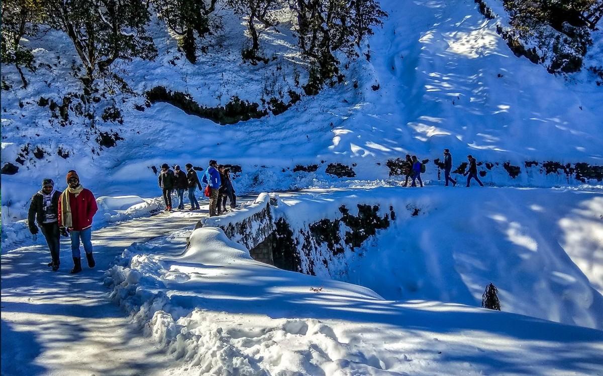 http://www.thegreatnext.com/Trekking Chopta Tungnath Uttarakhand Adventure Travel The Great Next