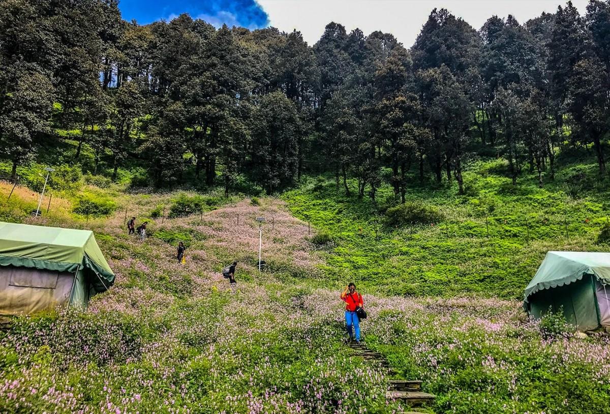 http://www.thegreatnext.com/Trekking Rafting Camping Tirthan Valley Himachal Pradesh Adventure Travel The Great Next