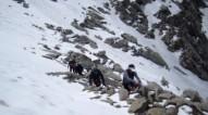 http://m.thegreatnext.com/Himachal Pradesh Indrahar Pass Trekking Snow Glacier The Great Next