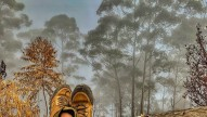 http://m.thegreatnext.com/Kumbakari Vattakanal Trek Tamil Nadu Hills Greenery The Great Next