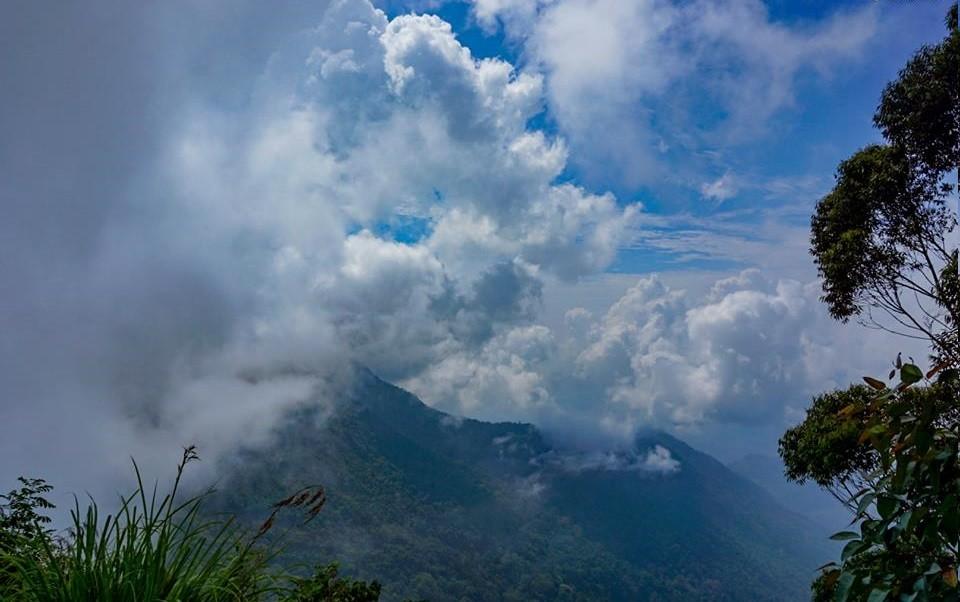 http://www.thegreatnext.com/Kumbakari Vattakanal Trek Tamil Nadu Hills Greenery The Great Next