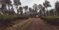 http://m.thegreatnext.com/Trekking Wayanad Karnataka Mountains Adventure Travel The Great Next