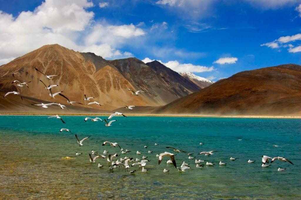http://www.thegreatnext.com/Motorbiking Motorcycling Ladakh Leh Pangong Nubra Valley Kargil Lake Mountain Pass  Mountains The Great Next