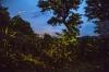 http://www.thegreatnext.com/Fireflies Trek Purushwadi Nashik Mumbai Pune Maharashtra The Great Next