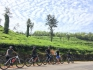 http://m.thegreatnext.com/Western Ghats Cycling Karnataka Bangalore Travel Adventure Activities Mountains