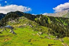http://www.thegreatnext.com/McLeod Ganj Triund Himachal Pastures Culture Trekking Camping The Great Next