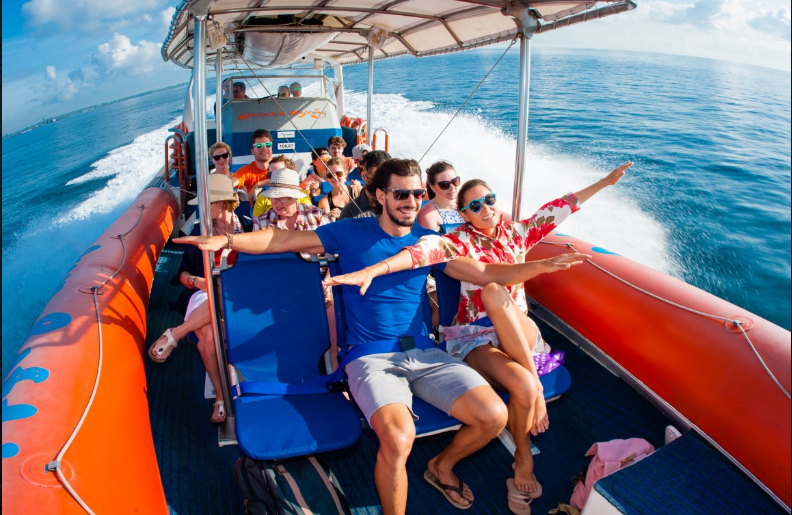 http://m.thegreatnext.com/Dolphin Cruise Bali Marine Life Indonesia Adventure Travel The Great Next