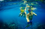 http://m.thegreatnext.com/Three Island Cruise Bali Marine Life Underwater Corals Sea Creatures  Indonesia Adventure Travel The Great Next