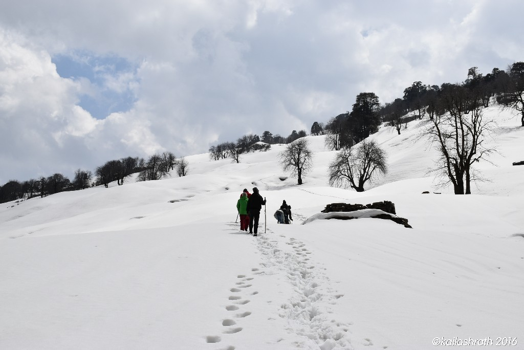 http://m.thegreatnext.com/Chandrakhani Pass Manali Kullu Saptrishi Himachal Pradesh Trekking Snow The Great Next