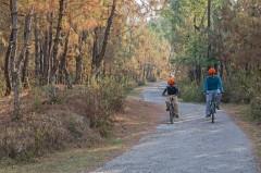 http://m.thegreatnext.com/Dharamshala Resort Luxury McLeodganj Hotel Himachal Pradesh Activities The Great Next