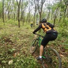 http://m.thegreatnext.com/Cycling Mountain Biking Idukki Kerala Tea Cardamom Plantation The Great Next