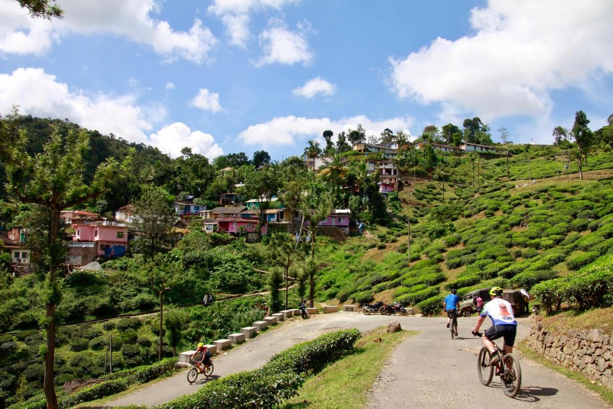 http://www.thegreatnext.com/Cycling Mountain Biking Idukki Kerala Tea Cardamom Plantation The Great Next